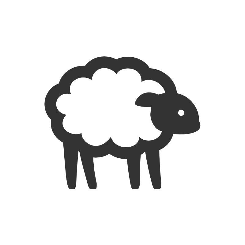 person not sheep